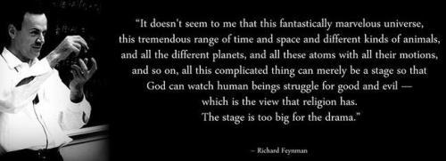 Feynman universe crop